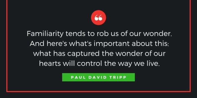 Come, Let Us Adore Him: A Daily Advent Devotional by Paul David Tripp